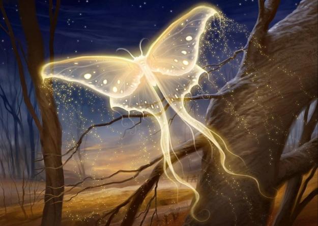 golden-light-butterfly