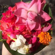india-flowers