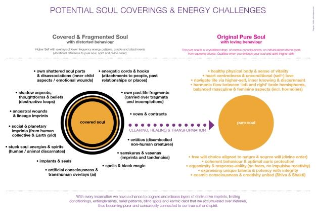 PotentIal Soul Coverings
